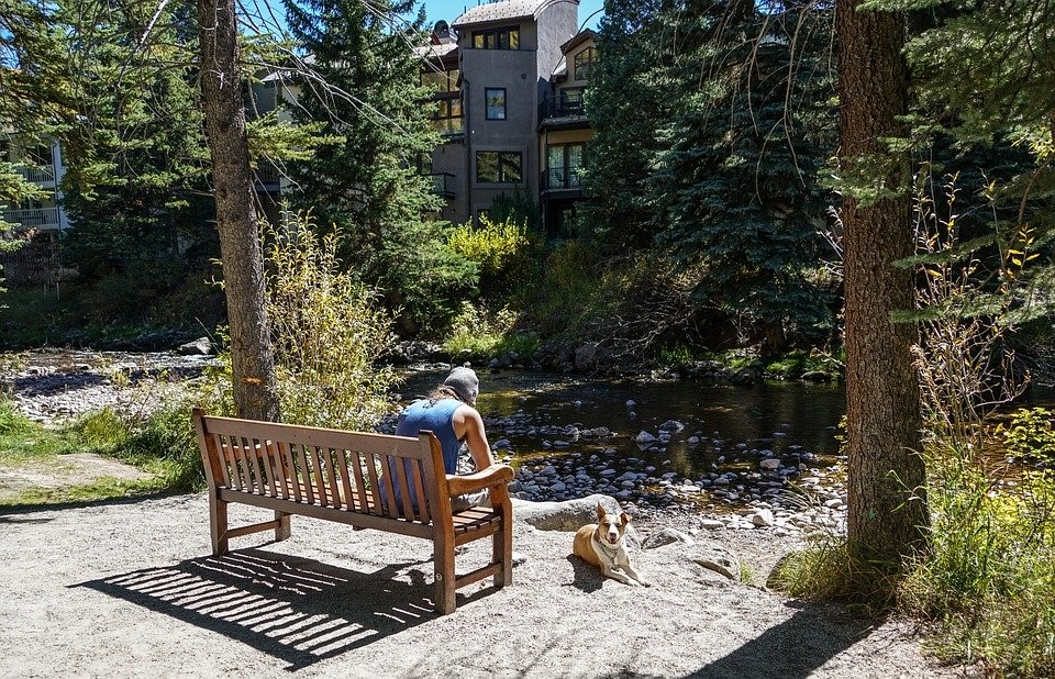 Person People, Dog, Bench, River, Animal, Pet, Happy